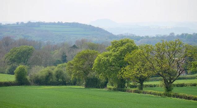 Stretton hills skyline