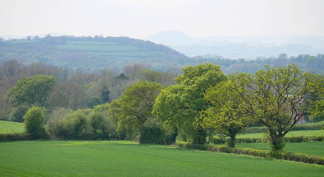 Stretton hills skyline