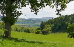 Looking down to Corvedale