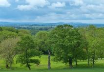 Welsh horizon
