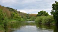 Tranquil Severn