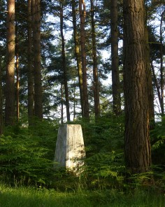 The trig point