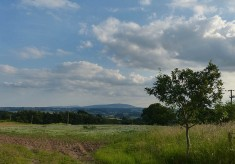 View to Brown Clee