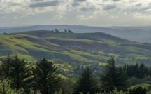 Linley Hill