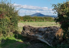There's the Wrekin