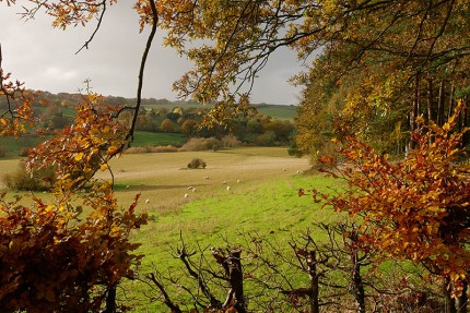 Autumn in the Severn Valley