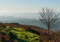... and view to Radnor Forest