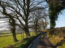 The lane to Broome...