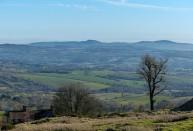 Habberley hills