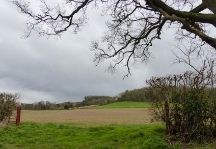 Harnage landscape