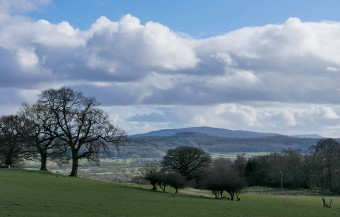 View to Brown Clee...