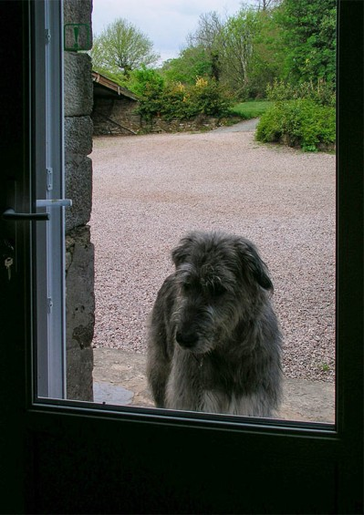 """(Before departure) """"Can I come in?"""""""