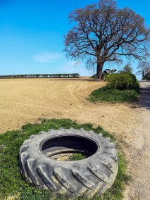 Fieldscape with tyre