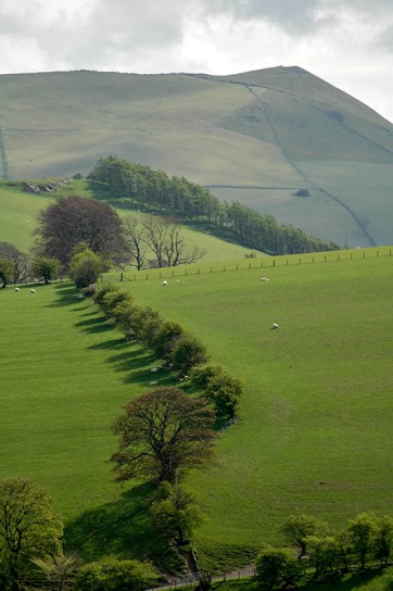 Welsh border hills