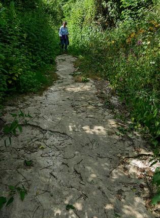 Path on bedrock