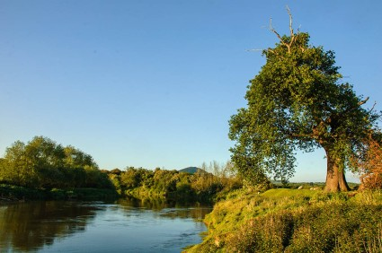 The Severn at Cressage