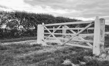 New fencposts and gate
