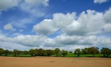Riverside fields