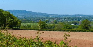 Wrekin and red field
