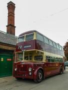 Bear bus 2...