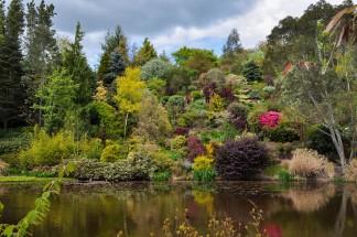 """hillside garden constructed around a pool"""