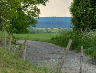 The land beyond the lane