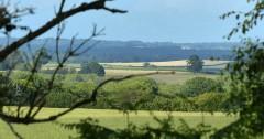 Distant fields