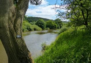 A downstream glimpse