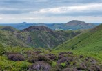 Stretton's tangled hills