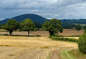 ... and the Wrekin