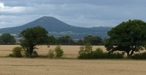Cornfields and Wrekin