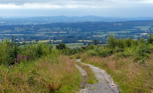 Top of the track - Clent hill horizon