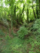The old railway trackbed