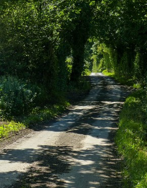The lane to Church Preen...