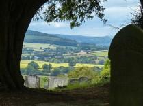 Graveyard view...
