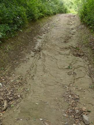 Walking on bedrock