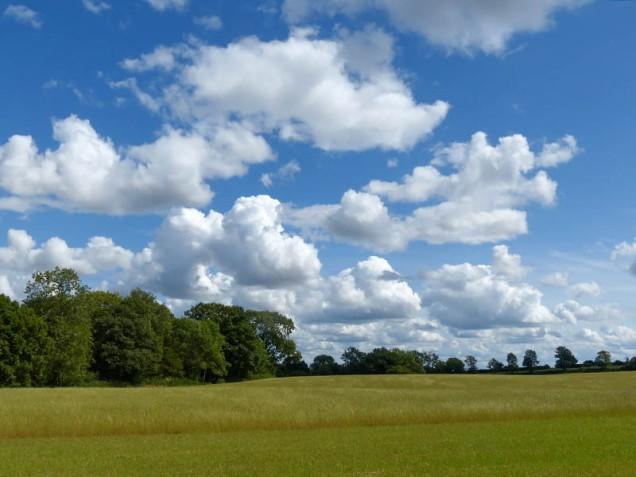 Salopian summer skyscape