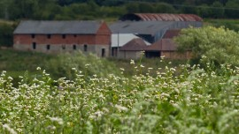 View to Hem Farm