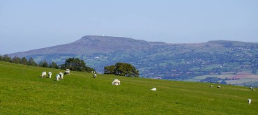 Hanway Common and Titterstone Clee