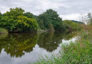 ...we reach the riverbank