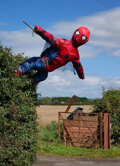 Here's Spiderman