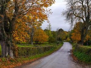 The road into Peaton