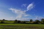 A cirrus sky