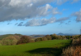 Causeway Wood and the Wrekin