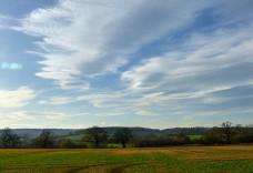 Shirlett skies