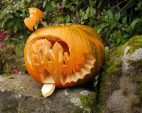 Post-Hallowe'en pumpkin