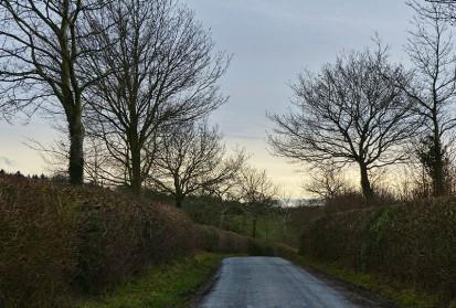 Along the lane