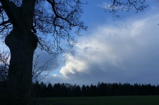 Cloud is building