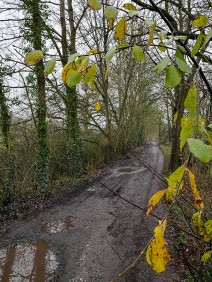 Along the old railway track