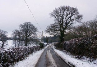 Further down the lane